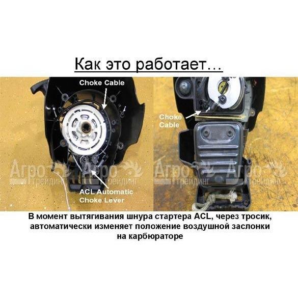 Бензокоса (бензиновый триммер) MTD 800 описание, цена, купить в интернет-магазине Агротрейдинг